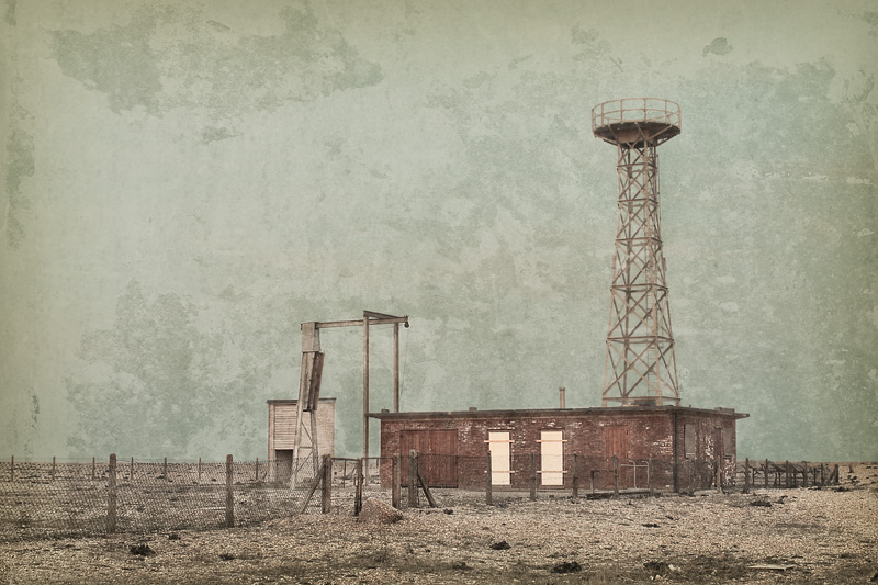 Dungeness #6