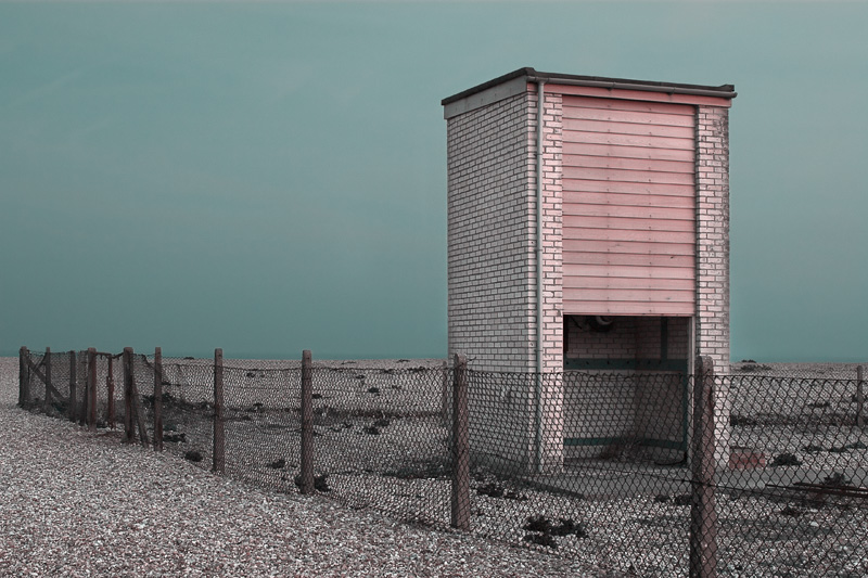Dungeness #7